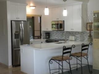 white shaker kitchen cabinets salt lake city